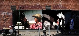 koshi_horse1.jpg